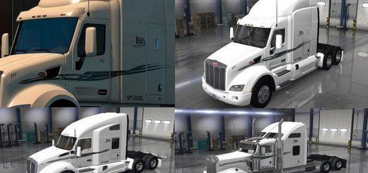BIG D Transport Skins