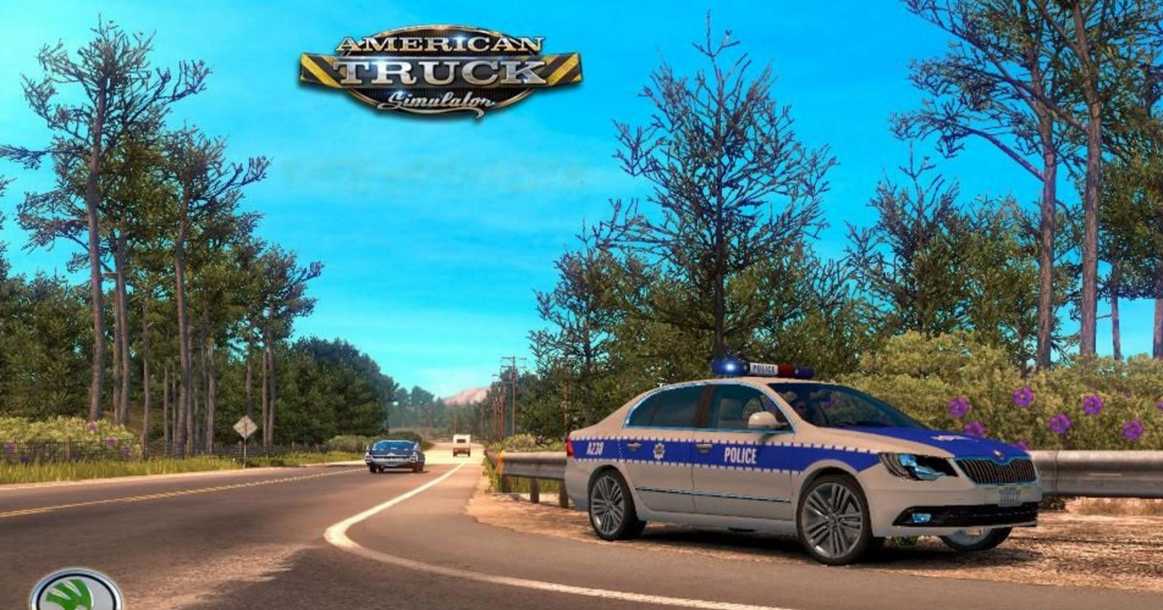 SH SKODA CAR (POLICE) (2)